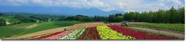 tour-packages-to-Hokkaido