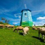 qing jing leisure farm