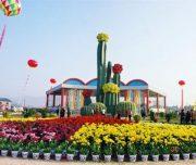 漳州 百花村