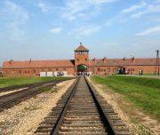 auschwitz-concentration-camp