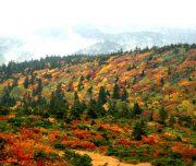 hakkoda mountain