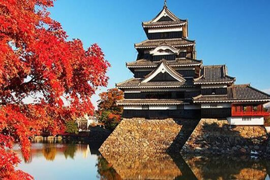 Japan Group Tour